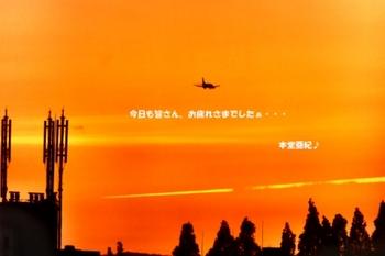 DSCF9365 - コピー - コピー.JPG