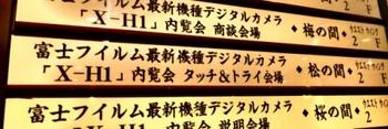 DSCF8945 - コピー.JPG
